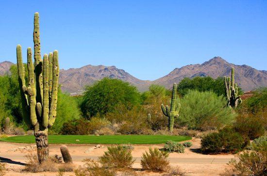 Top rated Grayhawk Golf Club in Scottsdale